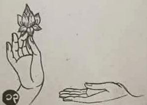 Padumatattha mudra (Liên Hoa Tịnh Chỉ thủ ấn)