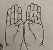 Attha dhamma mudra (Bát Chánh Đạo thủ ấn)